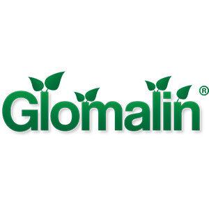IG CommunitySquare GlomalinLogo 300px 300x300