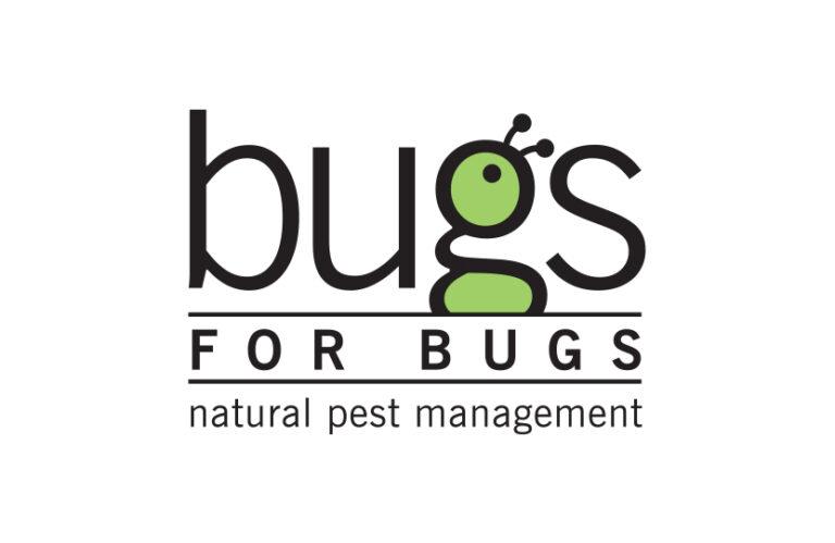 IG CommunitySquare bugs for bugsImage 1 Feature image 768x499