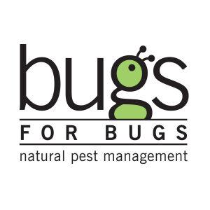 IG CommunitySquare bugs for bugsLogo 300px 300x300